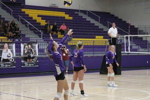 Lady Bear Volleyball Starts Season Strong