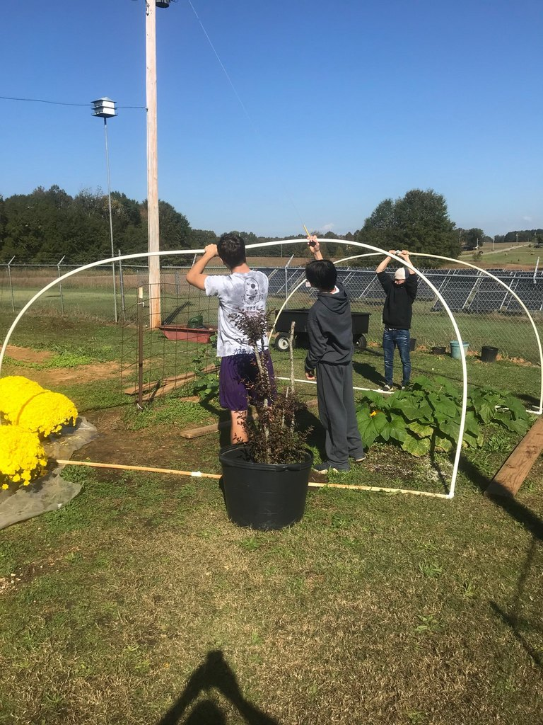 Hoop House Going Up