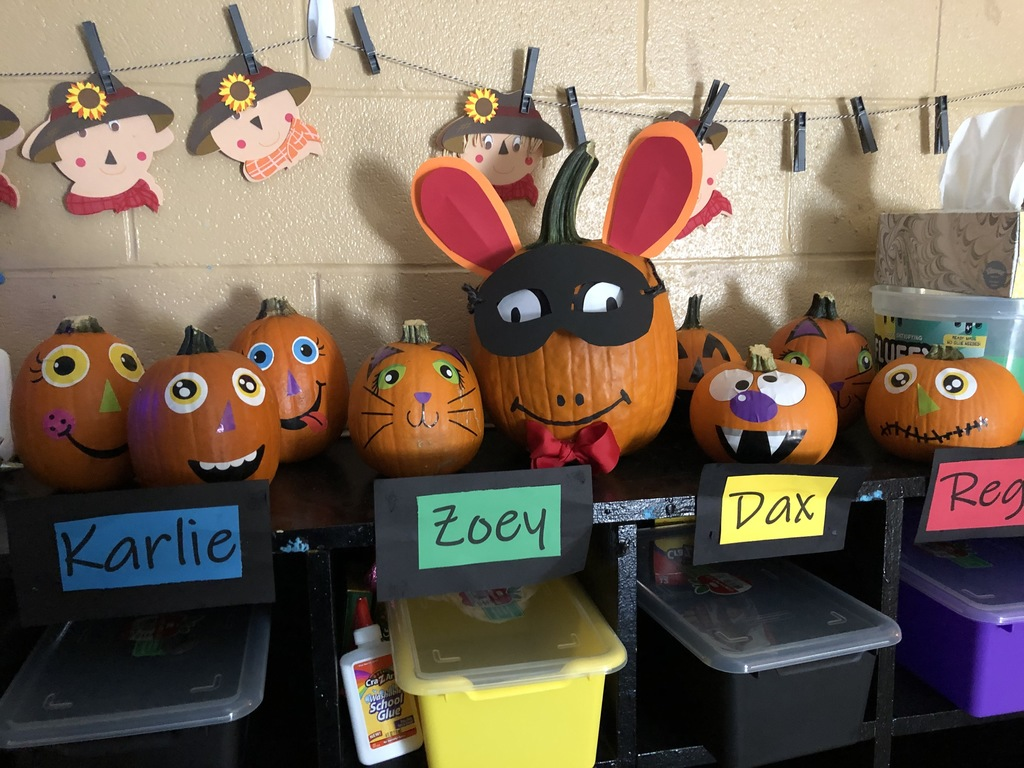 Teacher Academy Pumpkins