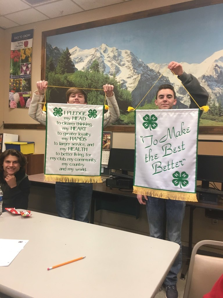 4H Pledge Banners